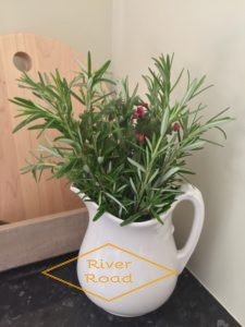 Rosemary in a ironstone jug
