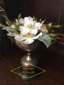 White bramble roses in vintage silver trophy cup